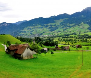 Switzerland Greenery